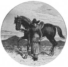 Isabella Bird et son cheval